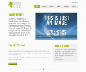 ResponseEve Css3 Template Downloads: 6628