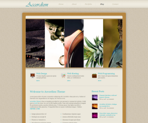 Accordion  Css3Template Downloads: 27