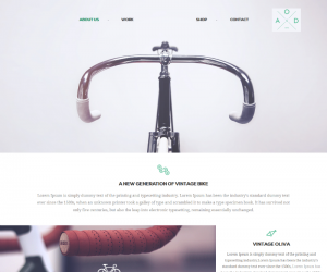 Bicycle  Css3Template Downloads: 17