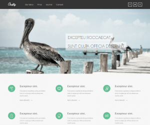 Crafty  Css3Template Downloads: 39