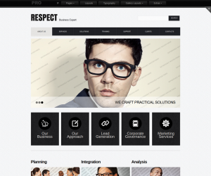 Respect Business Css3 Template Downloads: 11238
